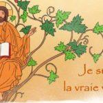 5ème dimanche de Pâques -B : Moi je suis la vigne, et vous les sarments
