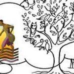 11ème dimanche du TO – B : Le règne de Dieu est comme une graine de moutarde